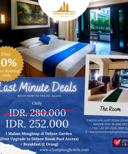Last Minute Deal The Room
